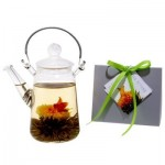 Tea Beyond Blooming GREEN Tea Gift Set GFS2001-1 Teapot Duo